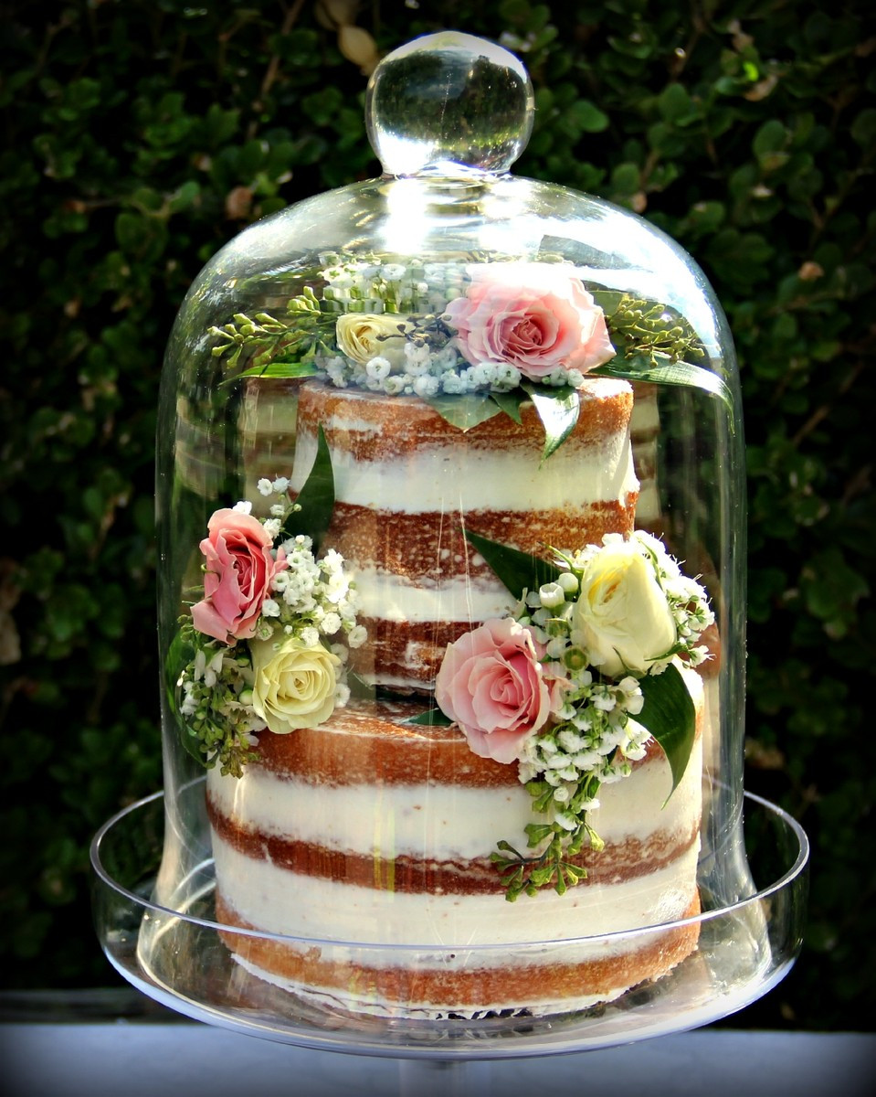 Wedding Cakes Asheville Nc  Suzanne s Signature Wedding Cakes Reviews & Ratings
