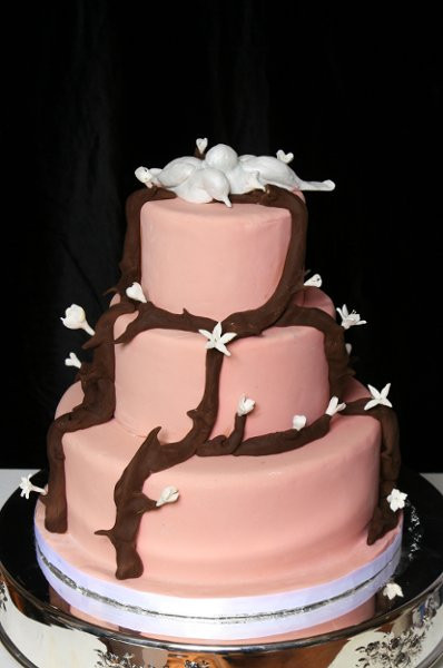 Wedding Cakes Denver  Designer Cakes & Confections LLC Denver CO Wedding Cake