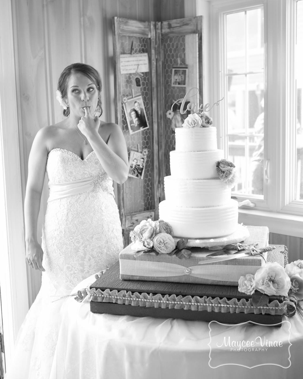 Wedding Cakes Fargo Nd  57 Fargo ND Moorhead MN Aberdeen SD traveling surround