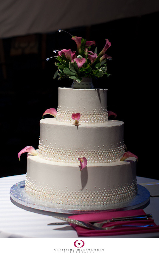 Wedding Cakes History  Tasty Tuesday 3 Tiny Dots Wedding Cake Pittsburgh