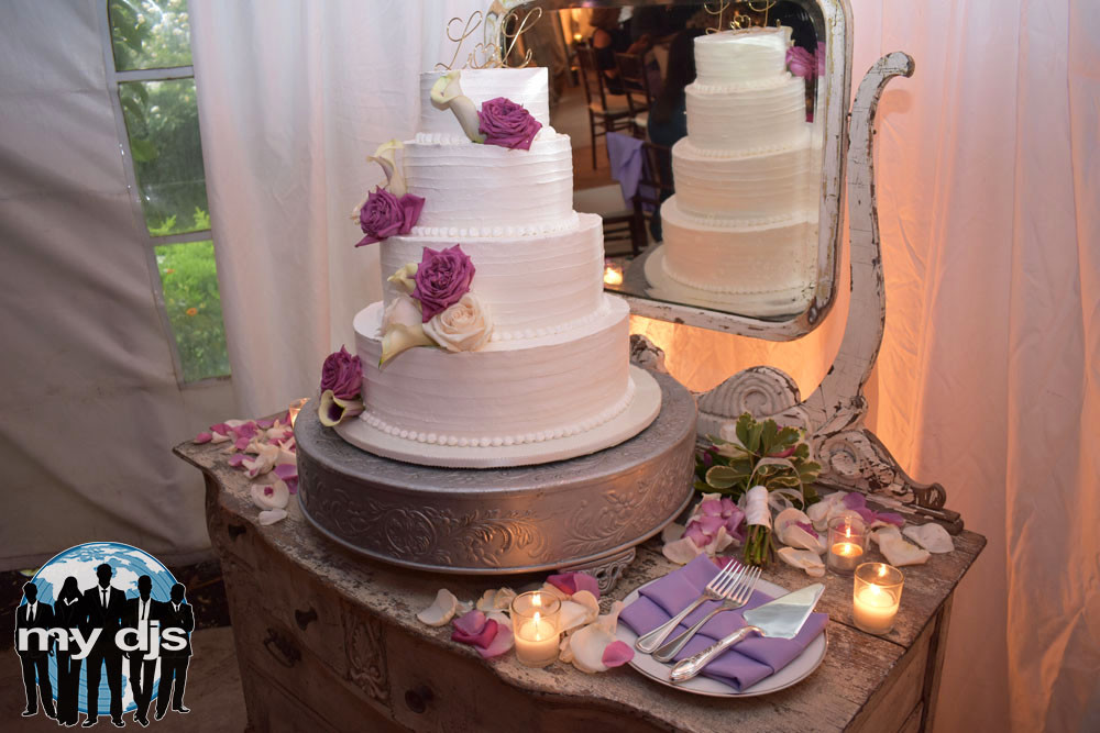 Wedding Cakes In San Diego the Best Twin Oaks Wedding Djs San Diego Djs