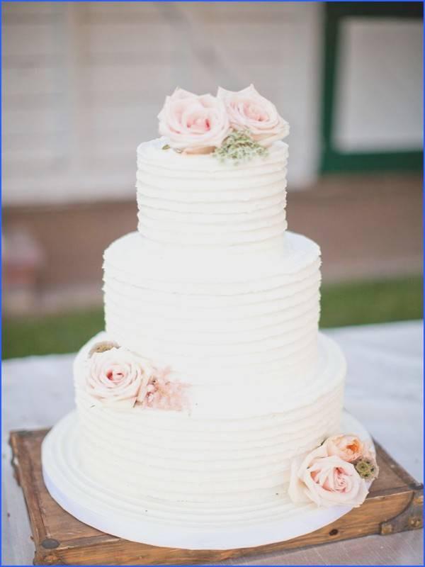 Wedding Cakes Jacksonville Fl  Wedding Cakes Jacksonville Fl