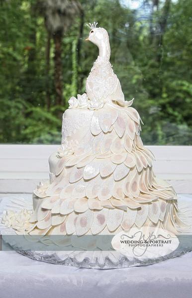 Wedding Cakes Jacksonville  D&D Cake Designs Jacksonville FL Wedding Cake