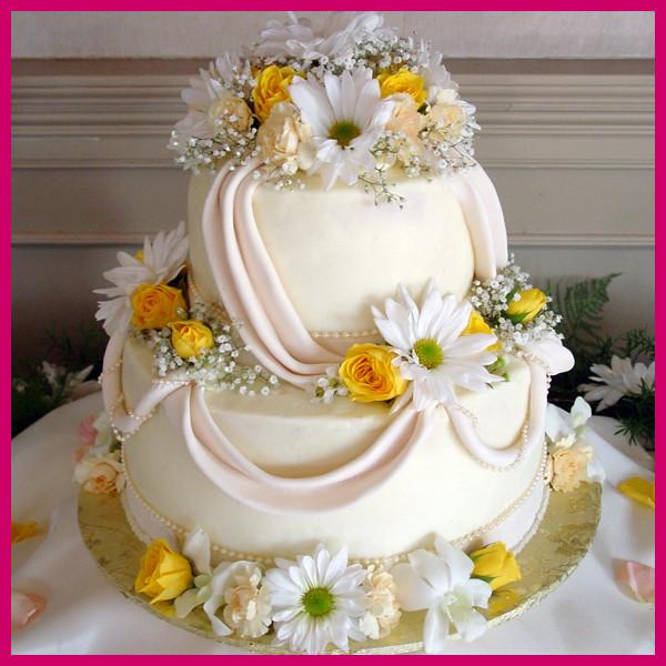 Wedding Cakes Knoxville  Daisy Cake pany Wedding Cake Knoxville TN
