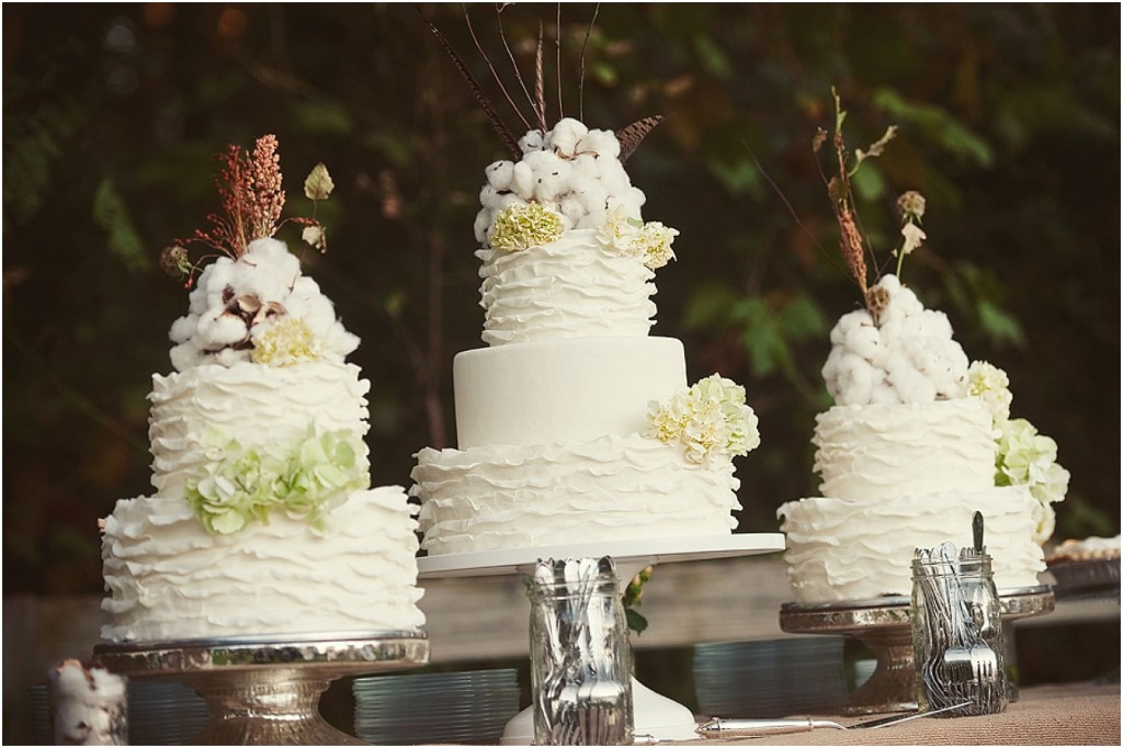 Wedding Cakes Knoxville Tn  Knoxville Wedding Cake Baker Sugarbuzz Bakers