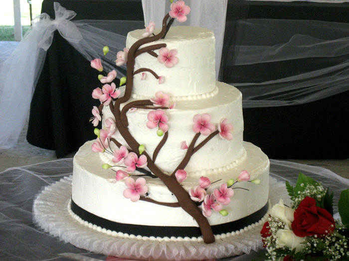 Wedding Cakes Lancaster Pa  Wedding Cakes Lancaster PA Central Manor Bakery & Grille