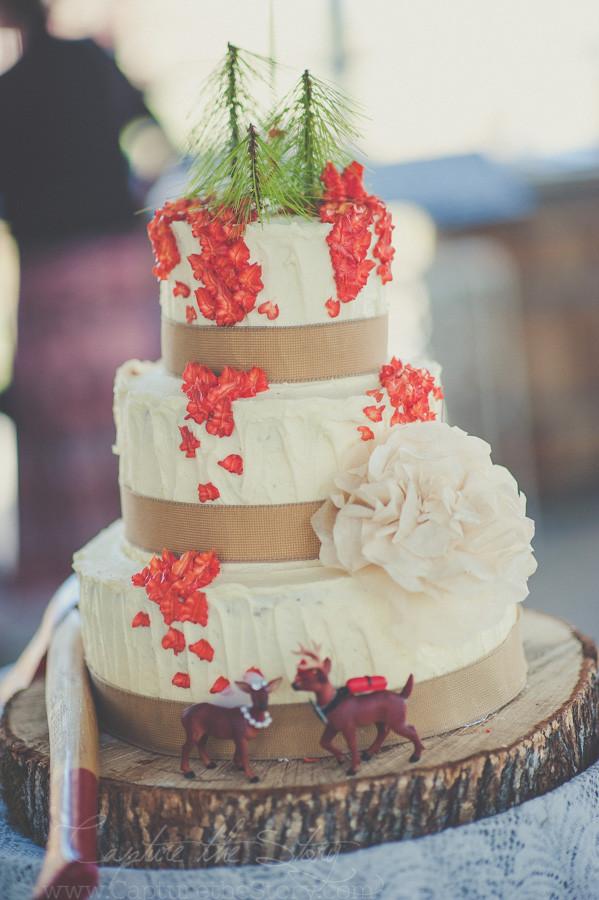 Wedding Cakes Redding Ca  Ashley Drew Love Story Palo Cedro CA Wedding