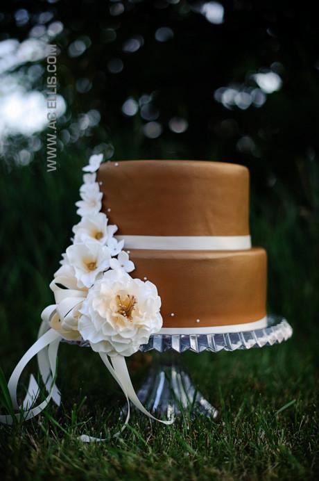 Wedding Cakes Sioux Falls Sd  Bronze Wedding Cake The Cake Lady Sioux Falls