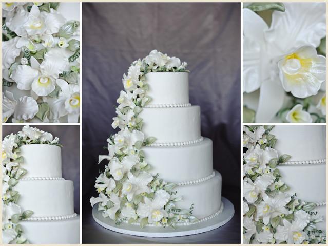 Wedding Cakes Sioux Falls Sd  Wedding cakes sioux falls sd idea in 2017