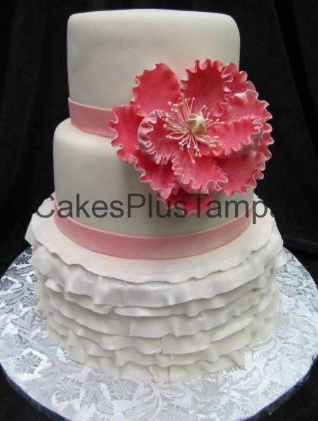 Wedding Cakes Tampa  Cakes Plus Tampa Wedding Cakes