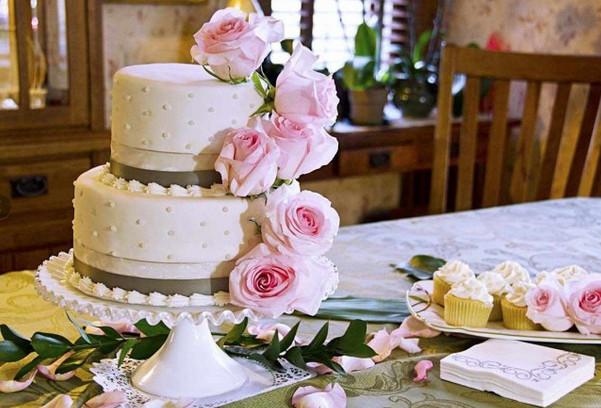 Wedding Cakes Topeka Ks  4 Cakes s Wedding Cake Kansas Topeka and