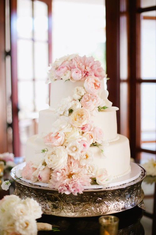 Wedding Cakes Tumblr Best 20 Wedding Cake Recipe