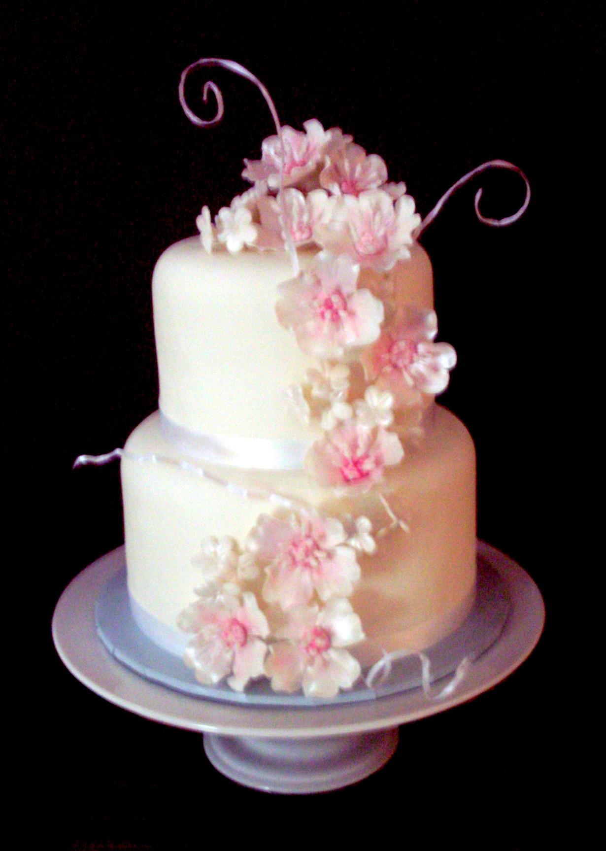 Wedding Cakes Utah  Wedding cake utah idea in 2017