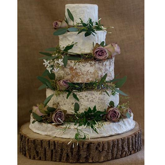 Wedding Cheese Cake  Grace Cheese Wedding Cake Cheese Wedding Cakes