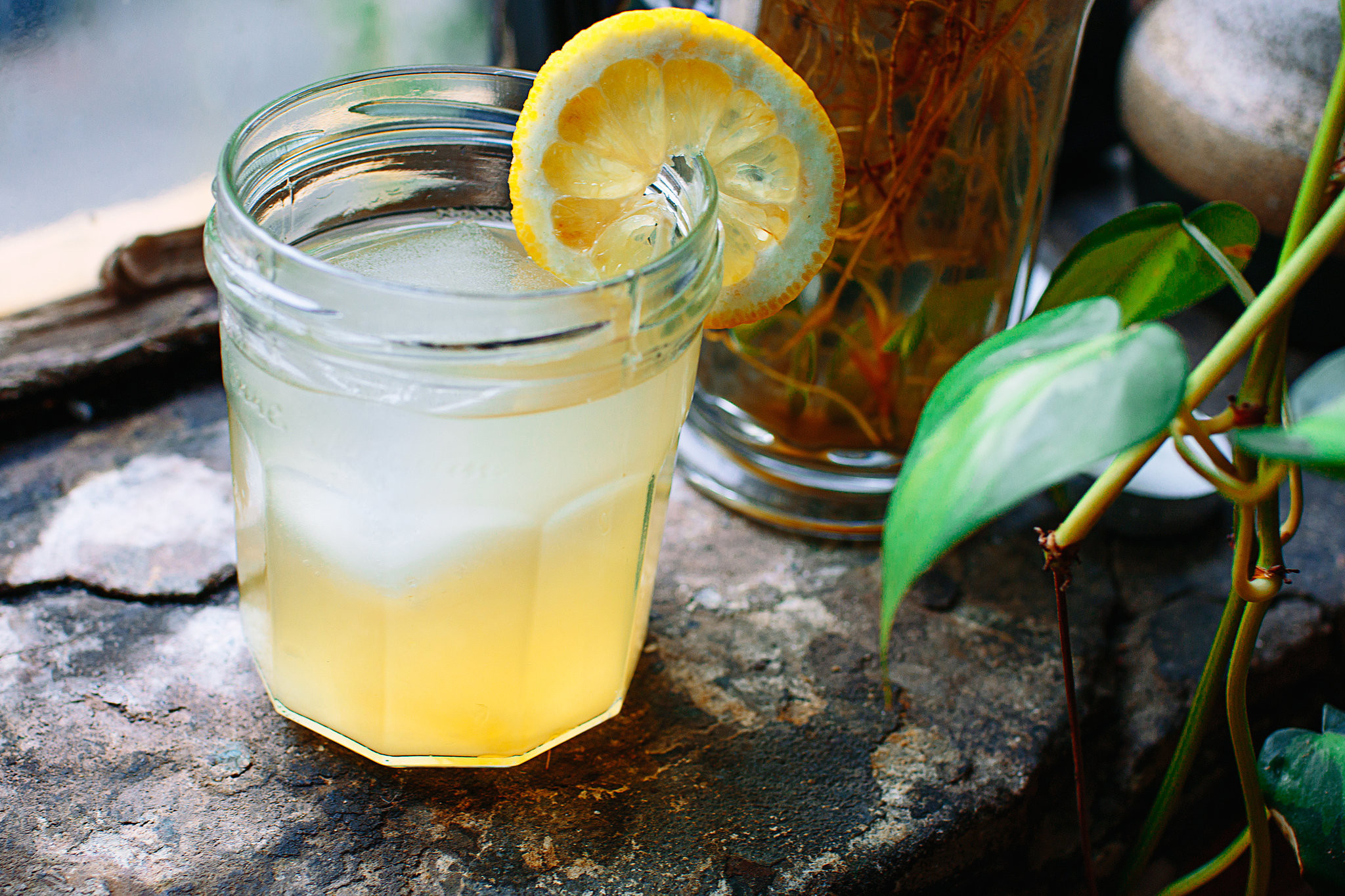 Whiskey Summer Drinks  Coconut Water and Whiskey Cocktail Recipe