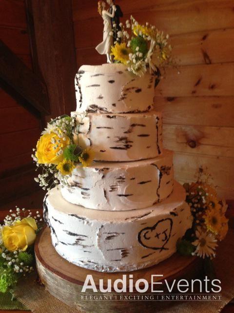White Birch Wedding Cake  17 Best images about birch bark wedding cake on Pinterest