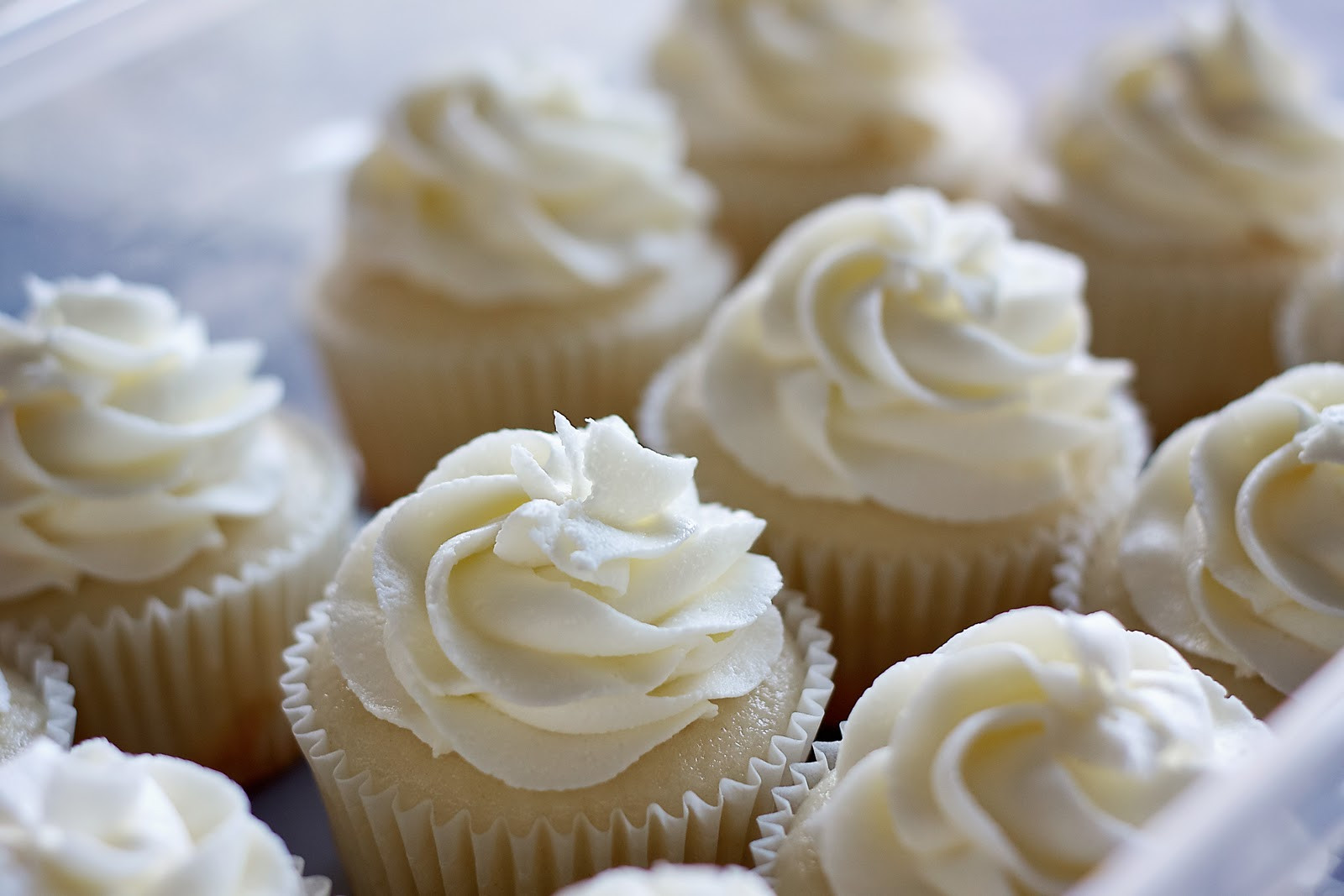 White Wedding Cake Cupcakes  Simply Cupcakes White Wedding Cake Cupcakes