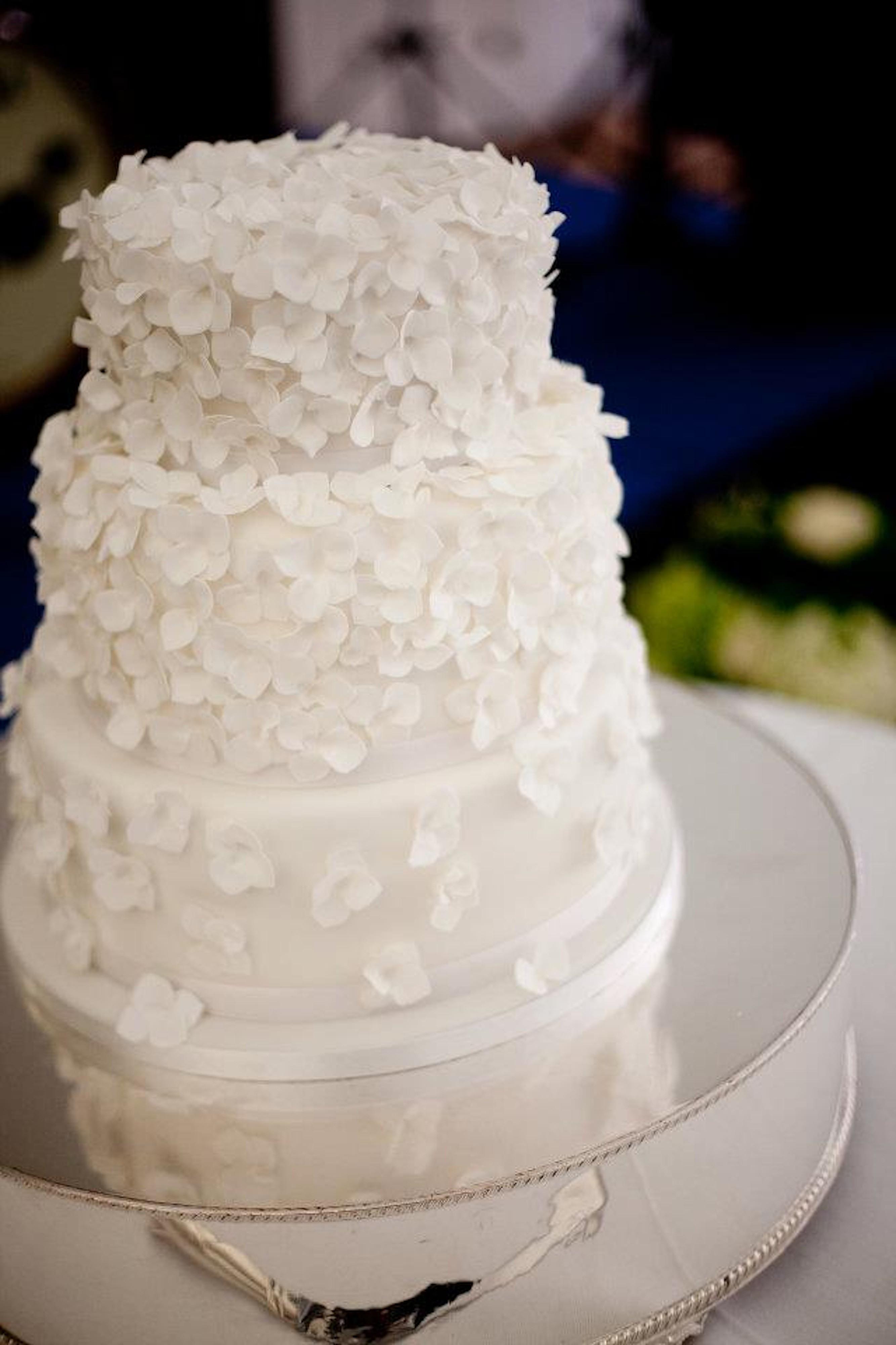 White Wedding Cake Icing  White wedding cake frosting idea in 2017