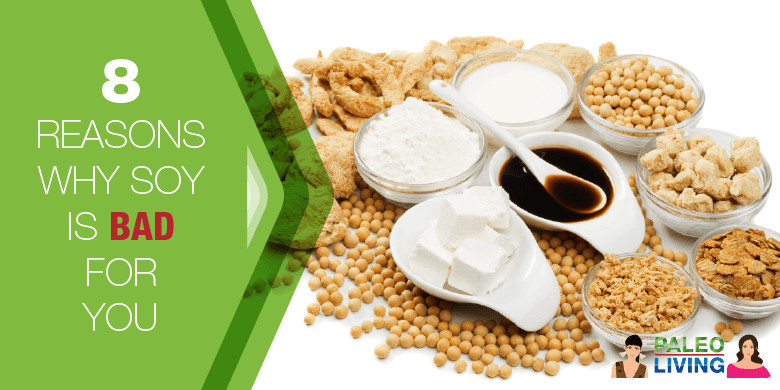Why Paleo Diet Is Unhealthy  8 Reasons Why Soy Is Bad For You Paleo Living