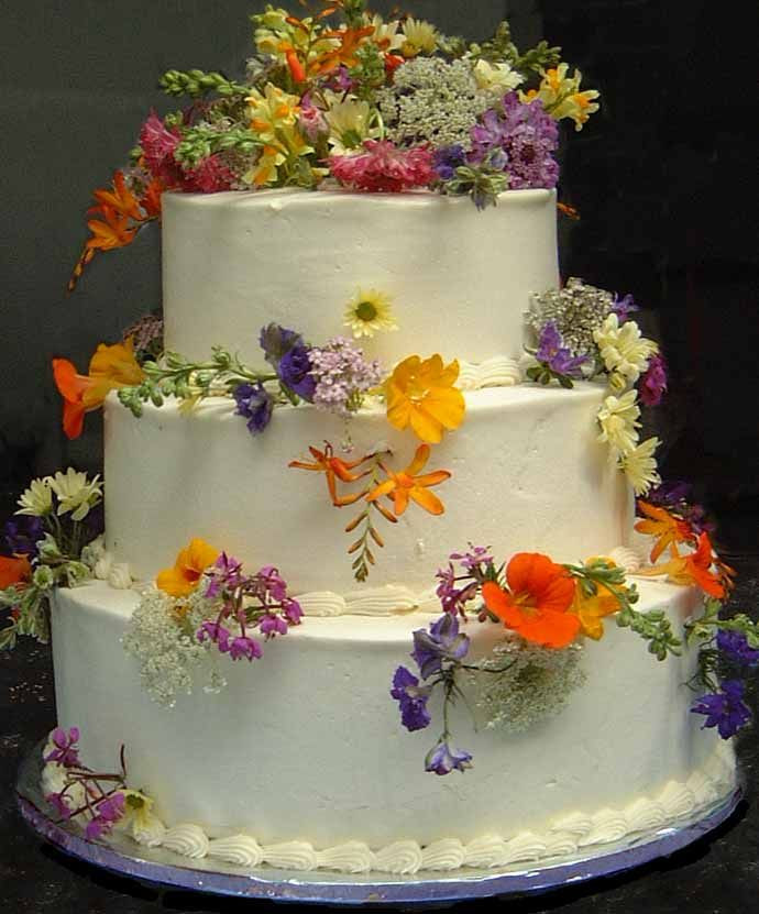 Wildflower Wedding Cakes  Best 25 Wildflower cake ideas only on Pinterest