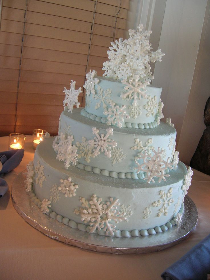 Winter Themed Wedding Cakes  winter birthday cakes for kids