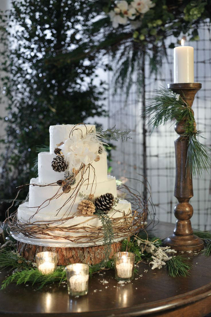 Winter themed Wedding Cakes 20 Ideas for 41 Adorable Winter Wedding Cake Ideas