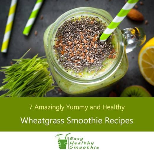 Yummy Healthy Smoothies  Wheatgrass Smoothies Recipes – 7 Yummy and Healthy Shakes