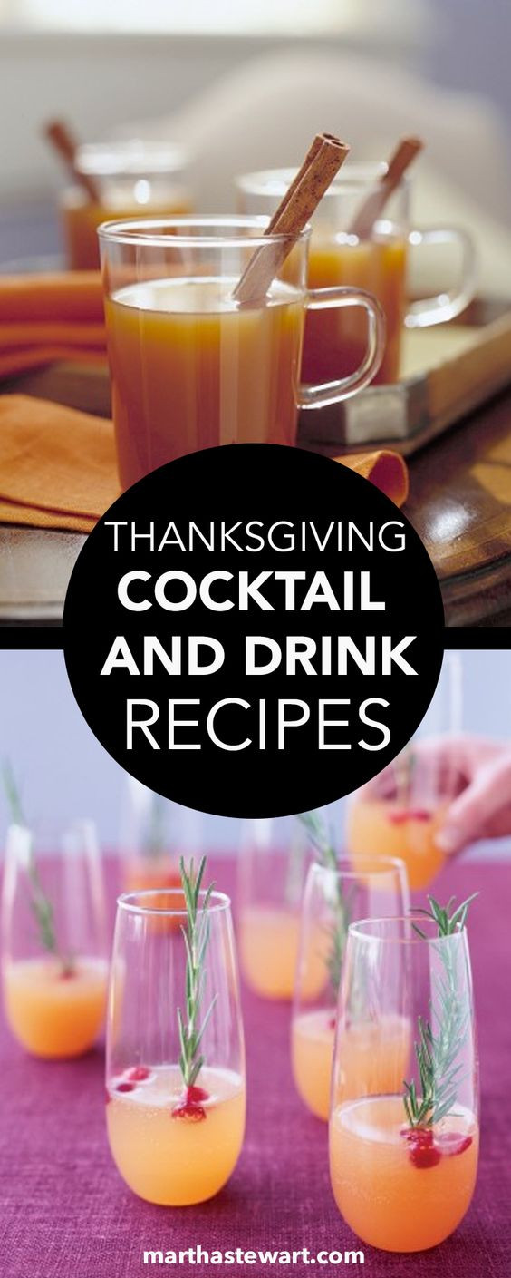 Alcoholic Thanksgiving Drinks  Thanksgiving Drinks and Wine on Pinterest