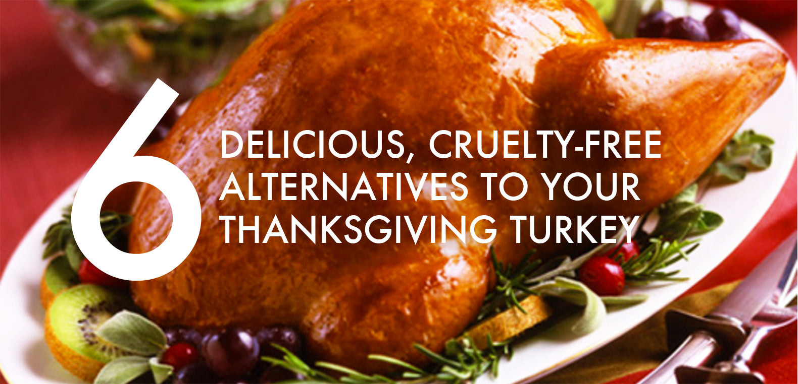 Alternatives To Turkey On Thanksgiving  6 Vegan and ve arian turkey alternatives for
