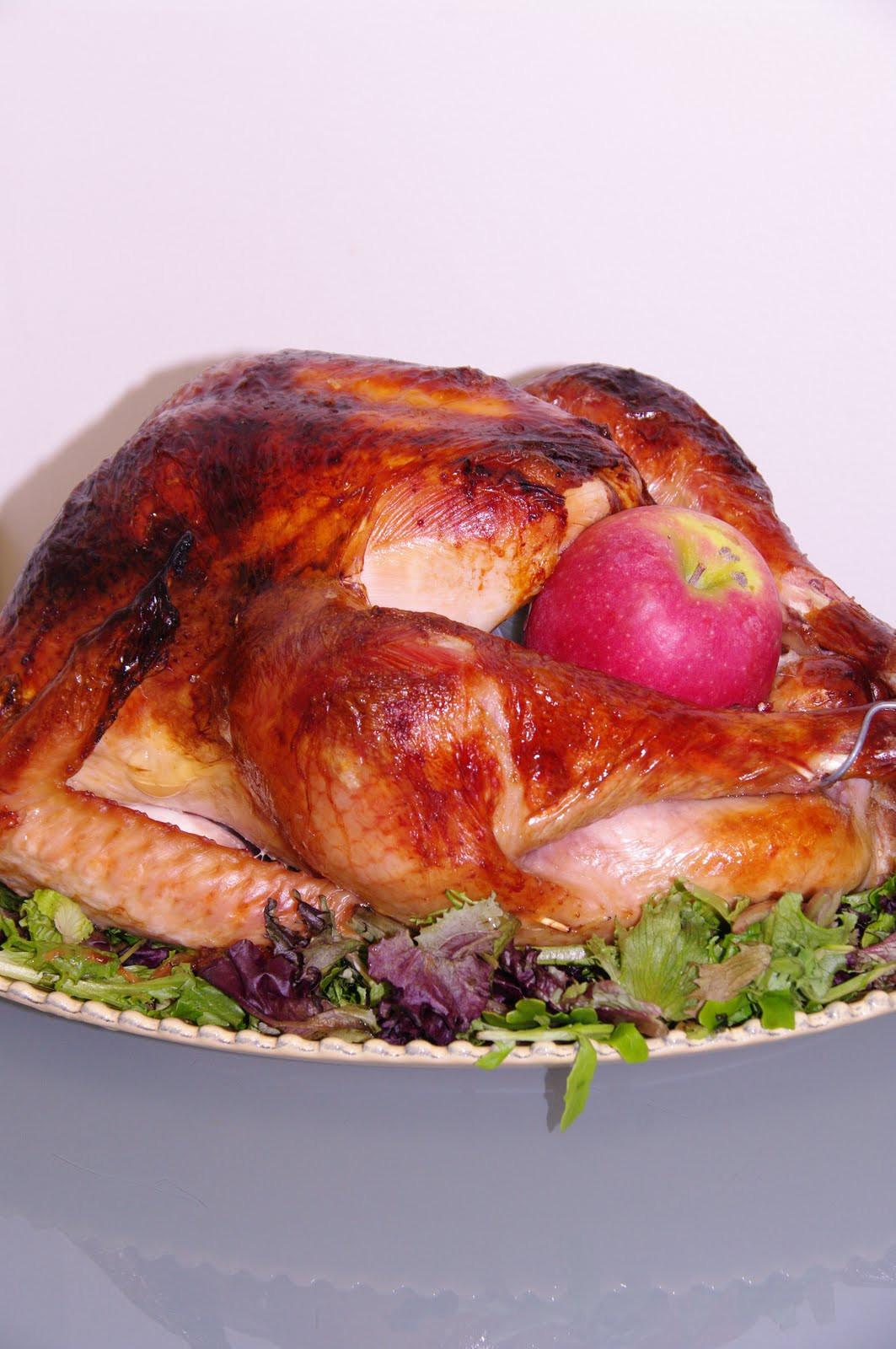 Alton Brown Thanksgiving Turkey  A Blog About Food Alton Brown s Roast Turkey