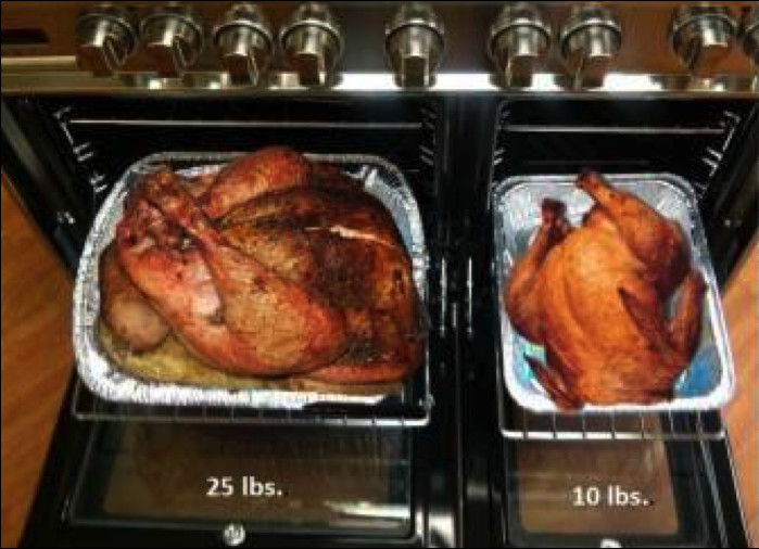 Average Size Turkey For Thanksgiving  Cooking a Turkey – Frequently Asked Questions