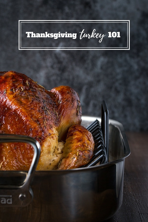 Average Size Turkey For Thanksgiving  Turkey 101 The Ultimate Guide to Thanksgiving Turkey