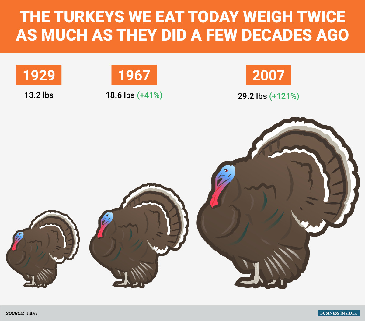 Average Thanksgiving Turkey Weight  The turkeys we eat today weigh twice as much as they did a