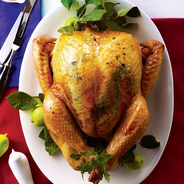 Best Roast Turkey Recipe For Thanksgiving  Top 10 tips for a perfect turkey Chatelaine