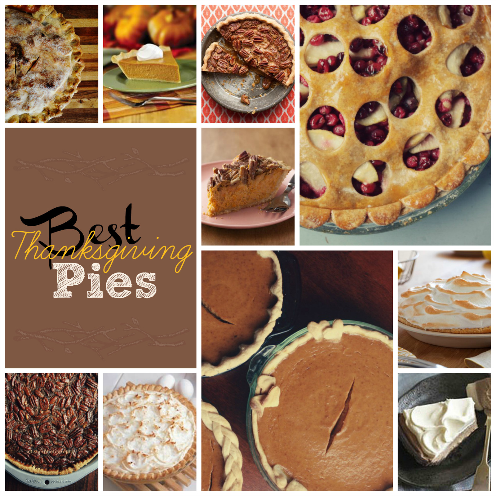 Best Thanksgiving Pies Recipes  Best Thanksgiving Pies This Girl s Life Blog