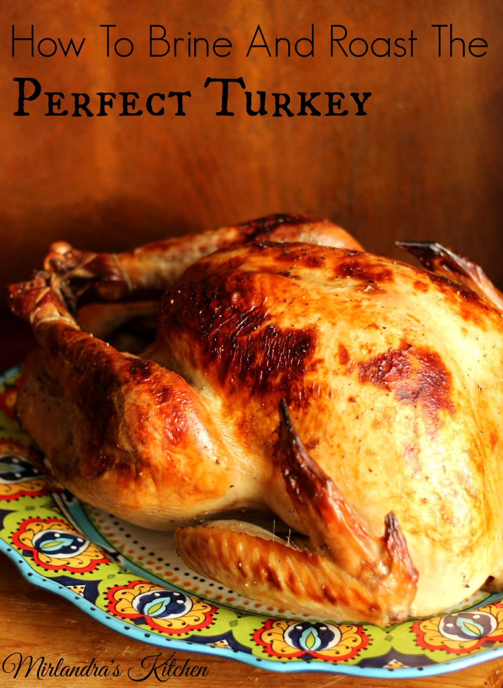 Best Thanksgiving Turkey Brine  How to Brine and Roast the Perfect Turkey Mirlandra s