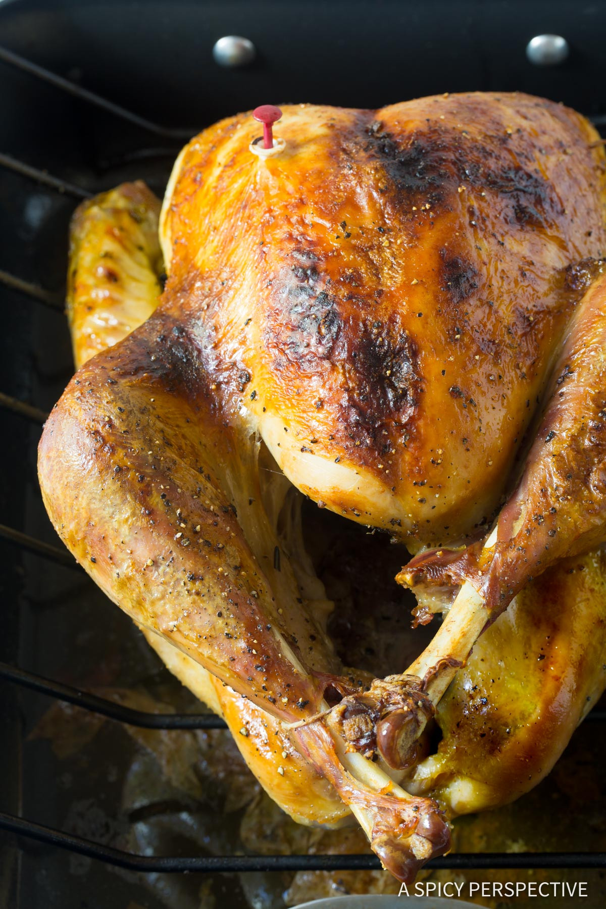 Best Thanksgiving Turkey Brine  Best Turkey Brine Recipe A Spicy Perspective