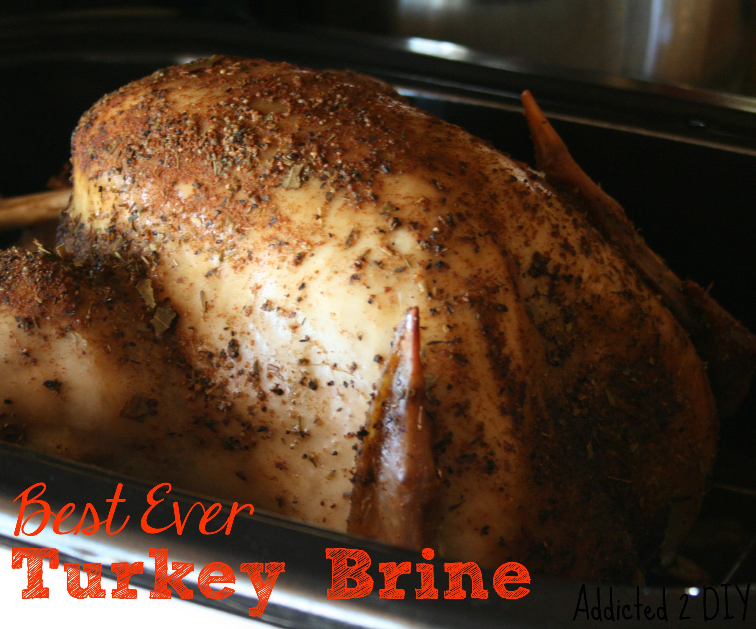 Best Thanksgiving Turkey Ever  Best Ever Turkey Brine Addicted 2 DIY