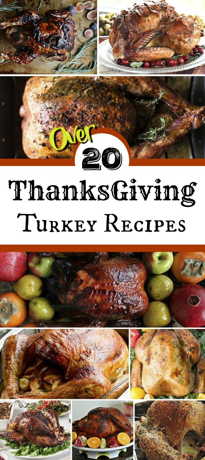 Best Turkey Recipes For Thanksgiving  Thanksgiving Turkey Recipes for the Best Thanksgiving