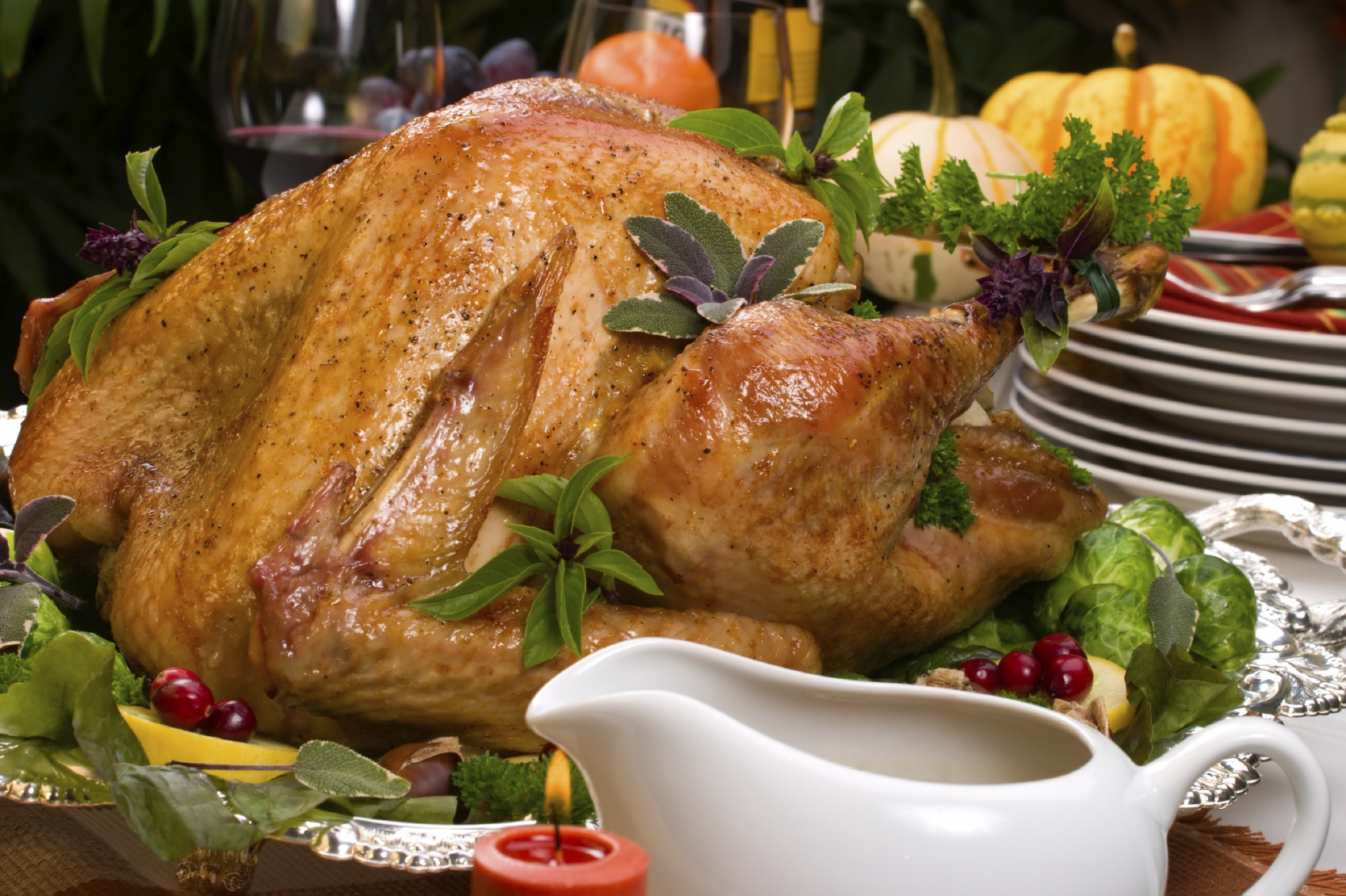 Biggest Thanksgiving Turkey  Tips for preparing your holiday turkey – News from