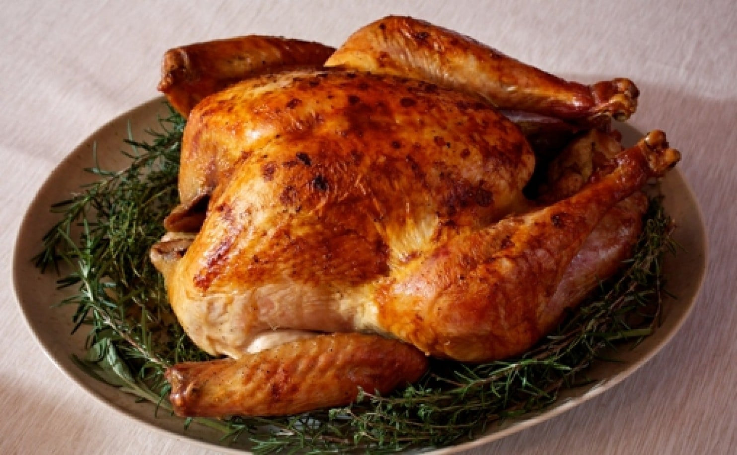 Buying Thanksgiving Turkey  Thanksgiving FAQs When to and how to store your