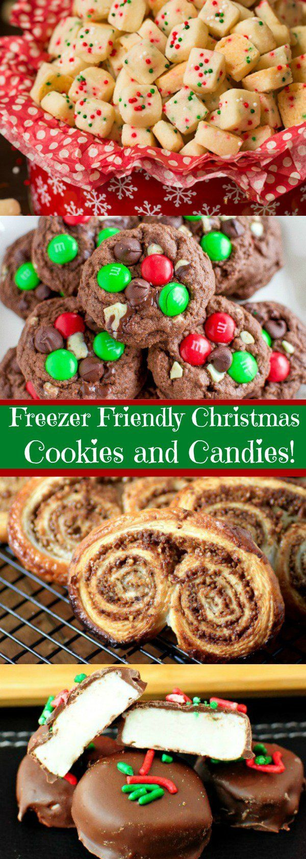 Can You Freeze Christmas Cookies  Best 25 Make ahead desserts ideas on Pinterest
