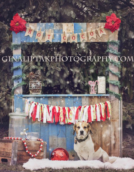 Candy Cane Christmas Tree Farm  Pinterest • The world's catalog of ideas