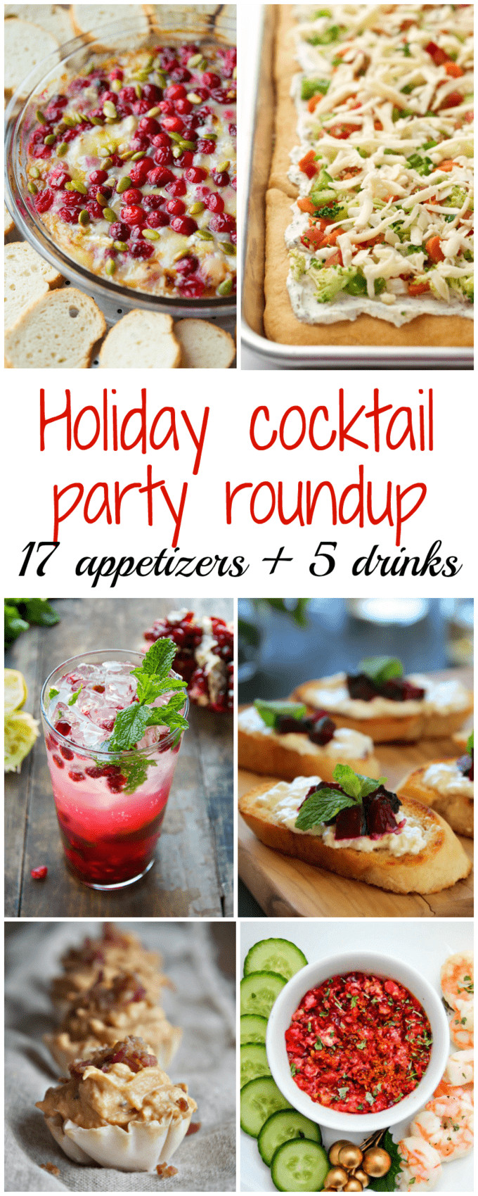 Christmas Cocktail Party Appetizers  Holiday cocktail party recipe round up Family Food on