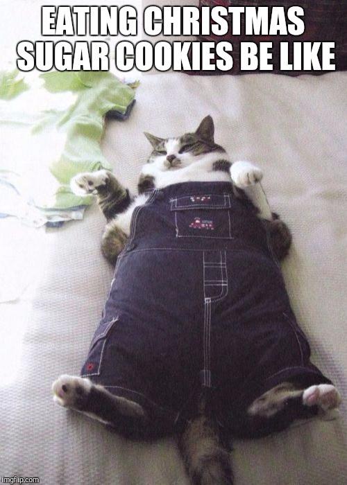 Christmas Cookies Meme  Fat Cat Meme Imgflip