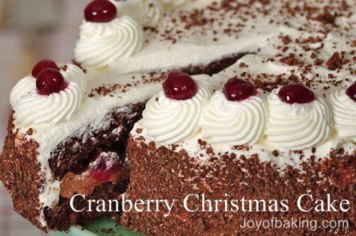 Cranberry Christmas Cake Recipe  Cranberry Christmas Cake Joyofbaking Tested Recipe