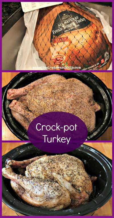 Crock Pot Turkey Recipes For Thanksgiving  Serve A Feast With These 10 Holiday Crockpot Recipes All