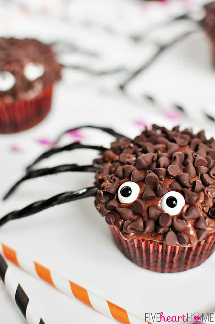 Cupcakes For Halloween  Spider Cupcakes for Halloween