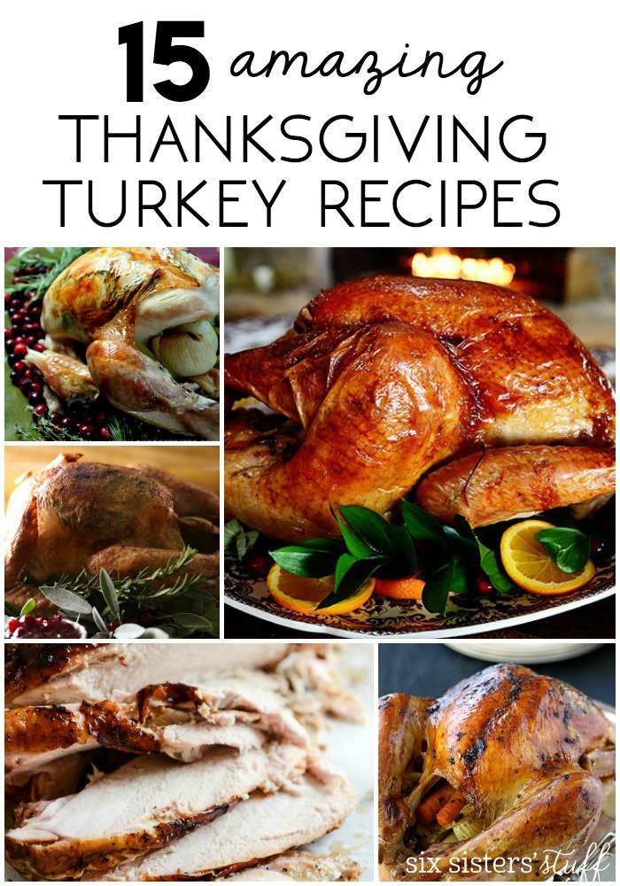 Delicious Turkey Recipes For Thanksgiving  15 Delicious Thanksgiving Turkey Recipes