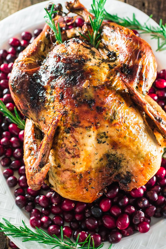 Delicious Turkey Recipes For Thanksgiving  16 Delicious Recipes for a Beautiful Thanksgiving